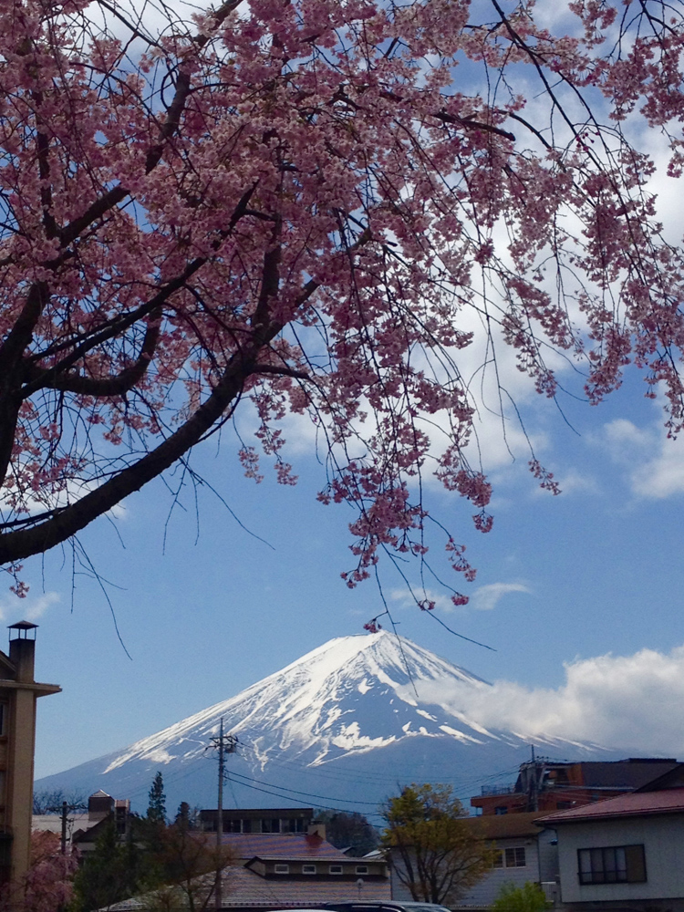 Mt. Fuji revealed itself!