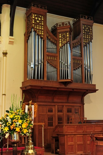 organ-2010.jpeg