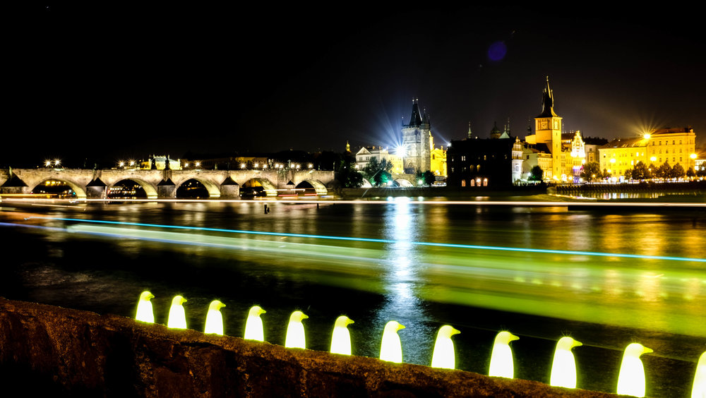 Penguins and the Charles Bridge