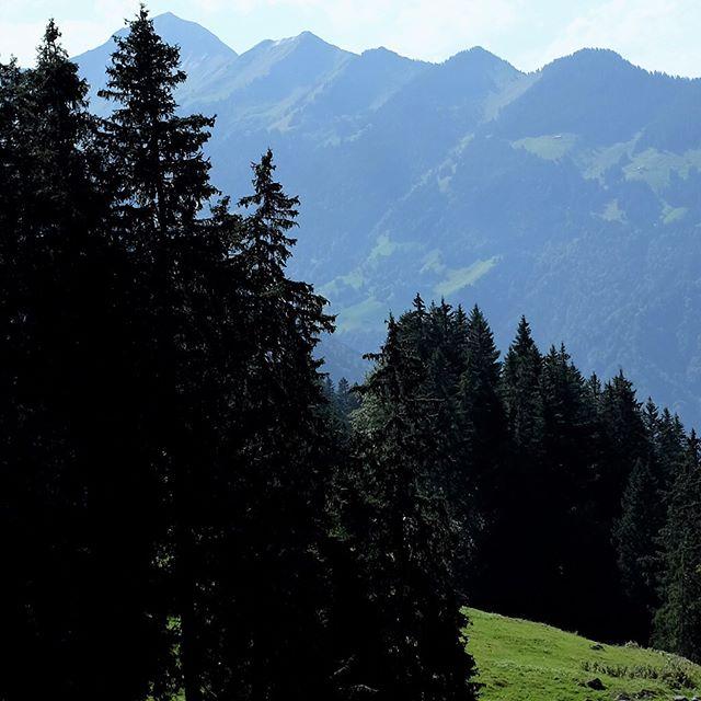 Panoramic view of Interlaken, Switzerland, September 13, 2016. . . . #panorama #panoramic #panoramicview #wanderlust #travel #igtravel #backpack #backpacking #fujifilmx100t #switzerland #hike #hiking #hikevibes #hikewithaview #switzerlandwonderland #travelphotography #traveller #worldtraveler #travelgram #latergram
