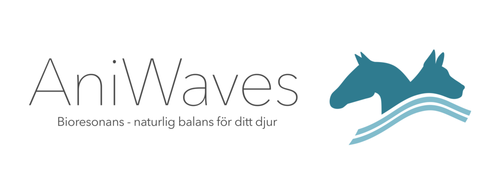 AniWaves_logo_full