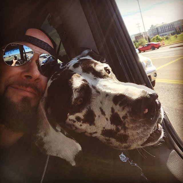 Good Morning everybody!!! Hope your day is as blessed as mine. #greatday #greatlife #greatdane #stoplight #livetobe #nemo