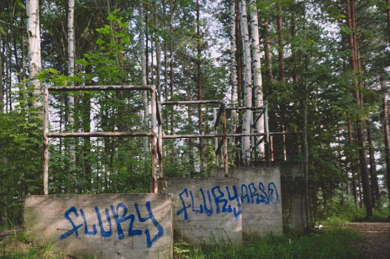 Tampere Pyynikki forest