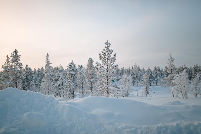 0Z3A4000.jpgKakslauttanen Arctic Resort Finnish Lapland Saariselkä