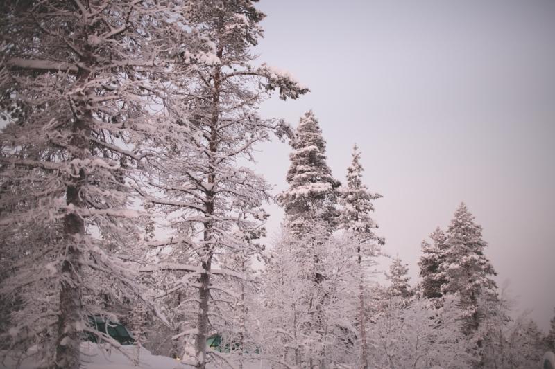 Kakslauttanen Arctic Resort Lapland VisitLapland Saariselkä glass igloo