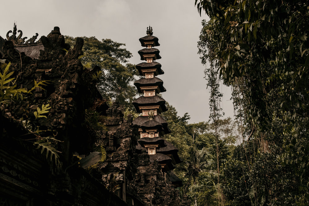 MTL Bali Adventure, 2018