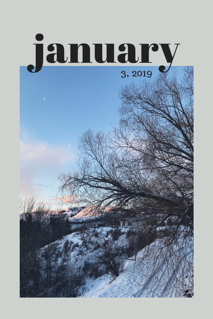January 2019 MTL Newsletter