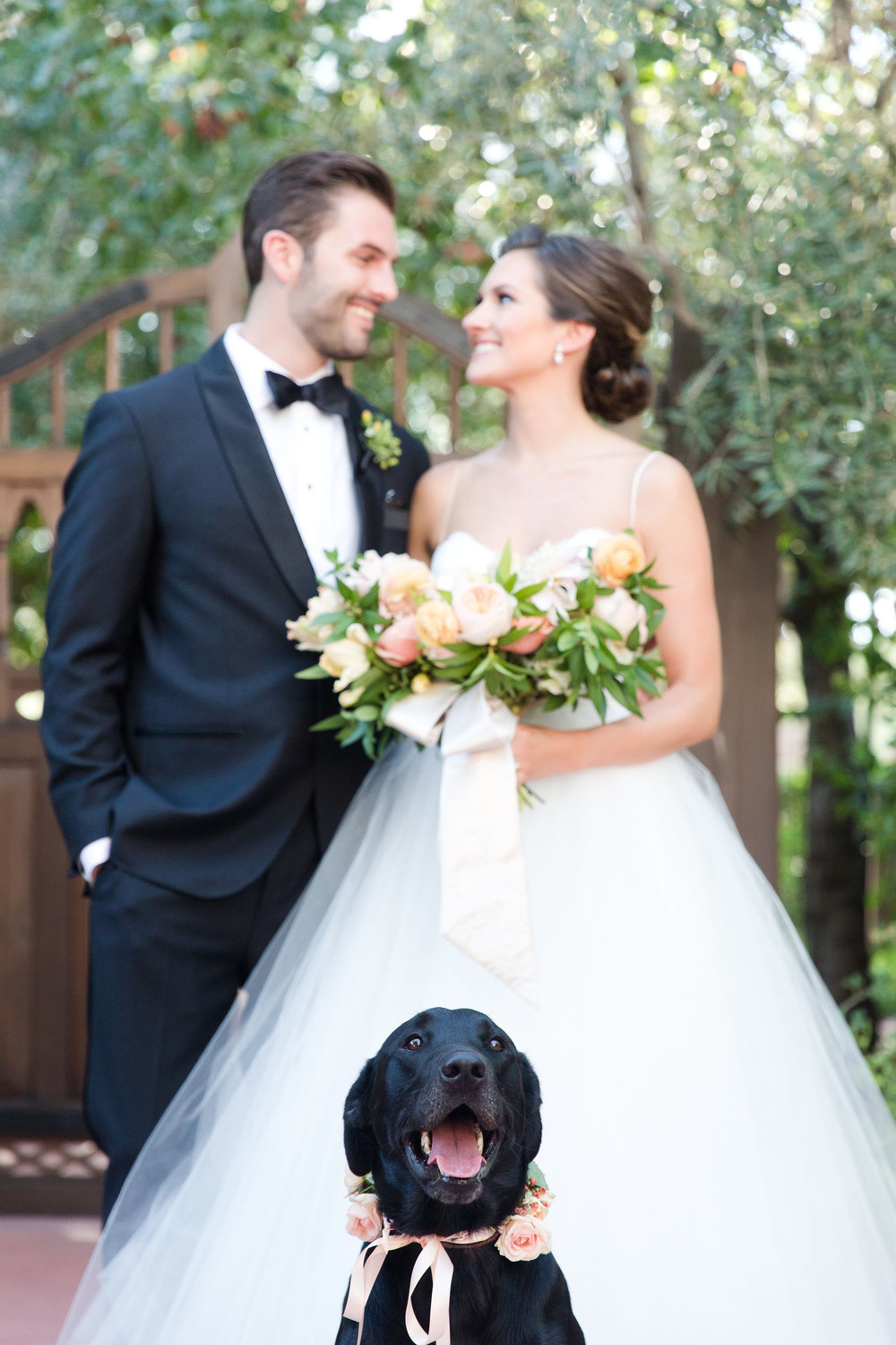 peach and mint wedding, blush and green wedding, Arizona Phoenix Scottsdale wedding planner, wedding dress, peach flowers, blush flowers, garden bouquet, boutonniere, black tux, mother of bride wedding dress bouquet s  ash, dog in wedding, wedding dog wreath, desert wedding
