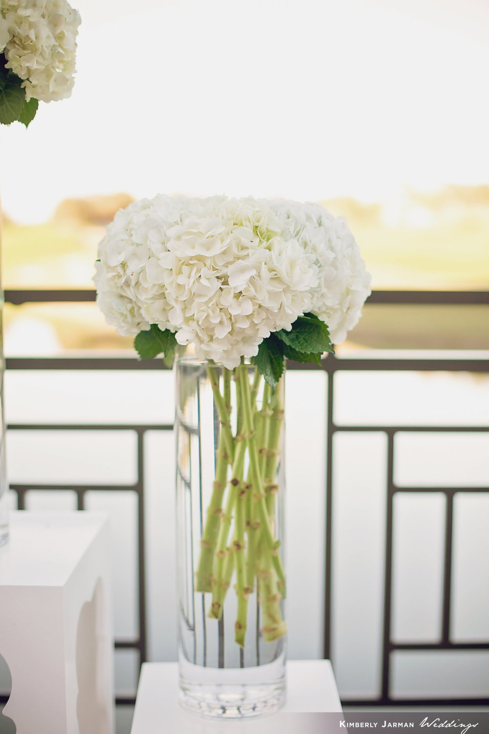 Classic, elegant wedding, white and gold wedding, ceremony alter flowers, white alter flowers, white hydrangea bouquets