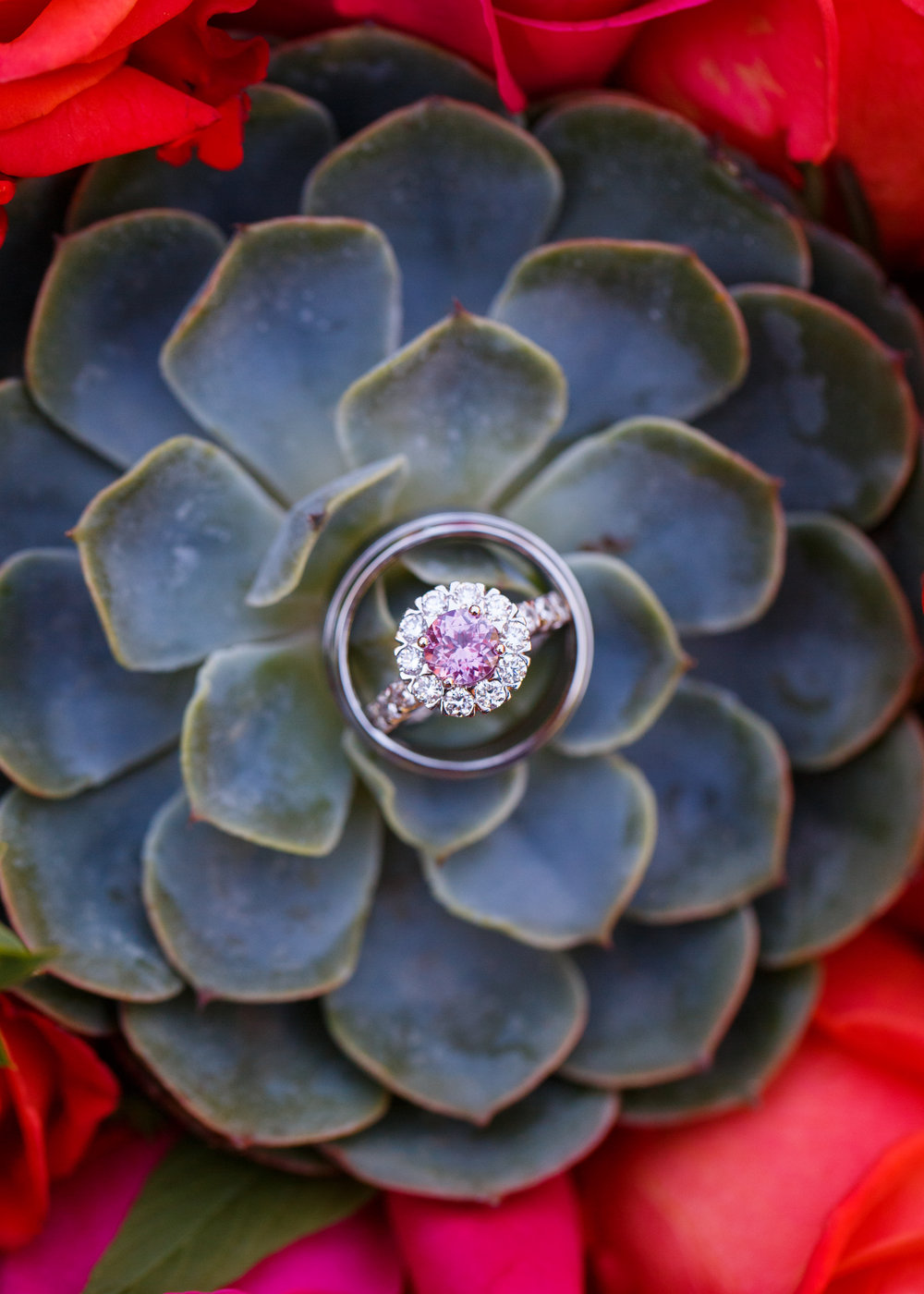 wedding ring arizona wedding planner succulent