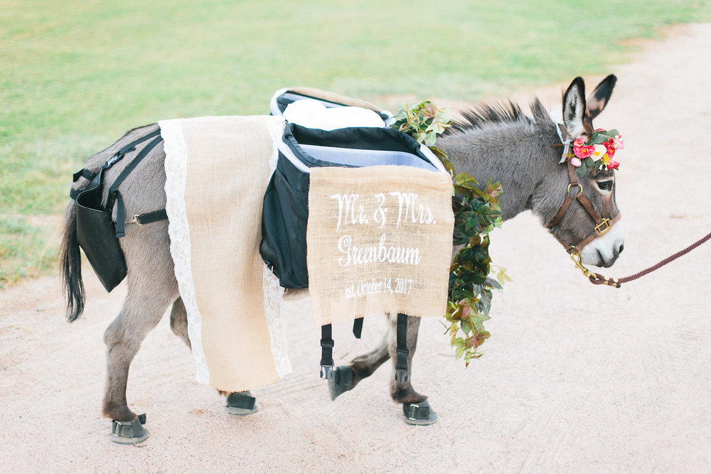 Phoenix - wedding - planner-0041.jpg