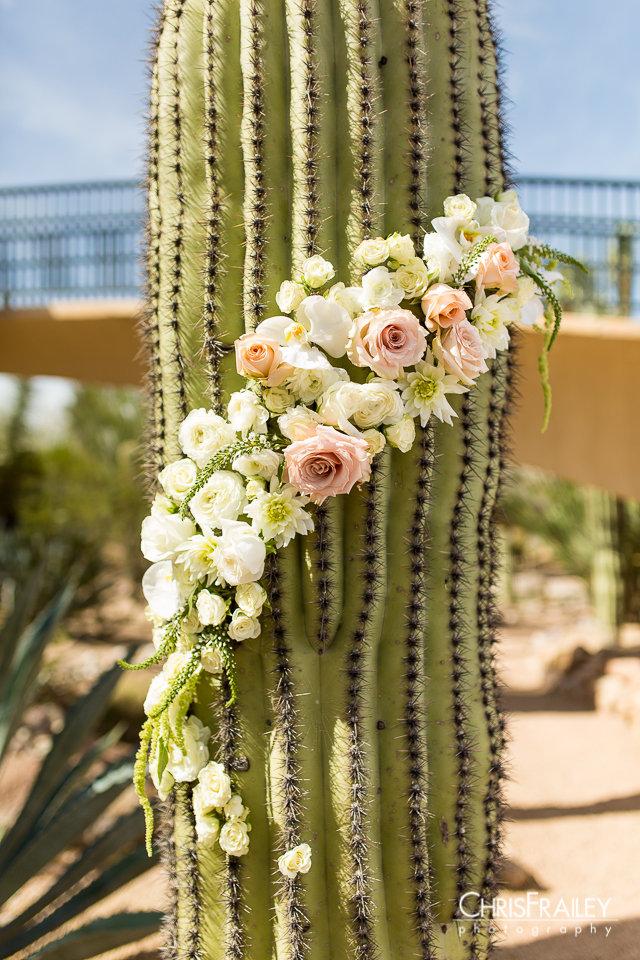 Phoenix- wedding- coordinator- carefree0007.jpg