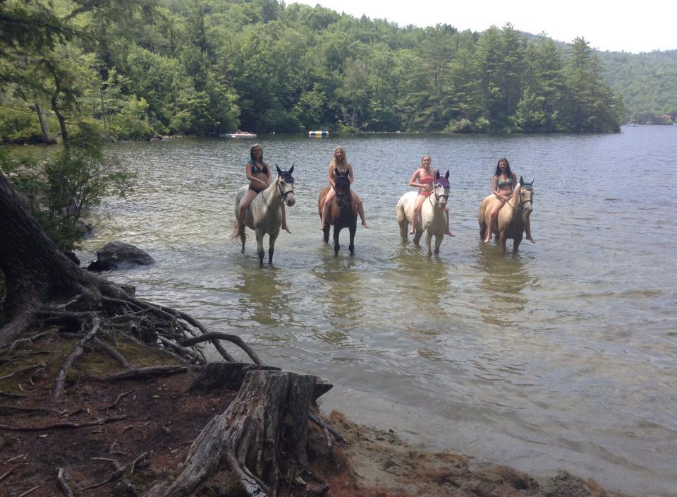 Swimming w horses.jpg