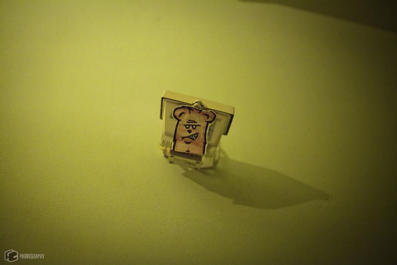 ponys-fohlen-vierkant-44-von-48.jpg