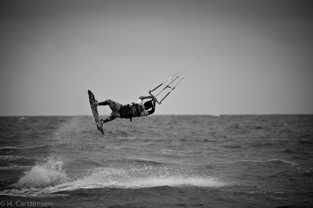 beetle-kite-wm-22-von-60_0.jpg