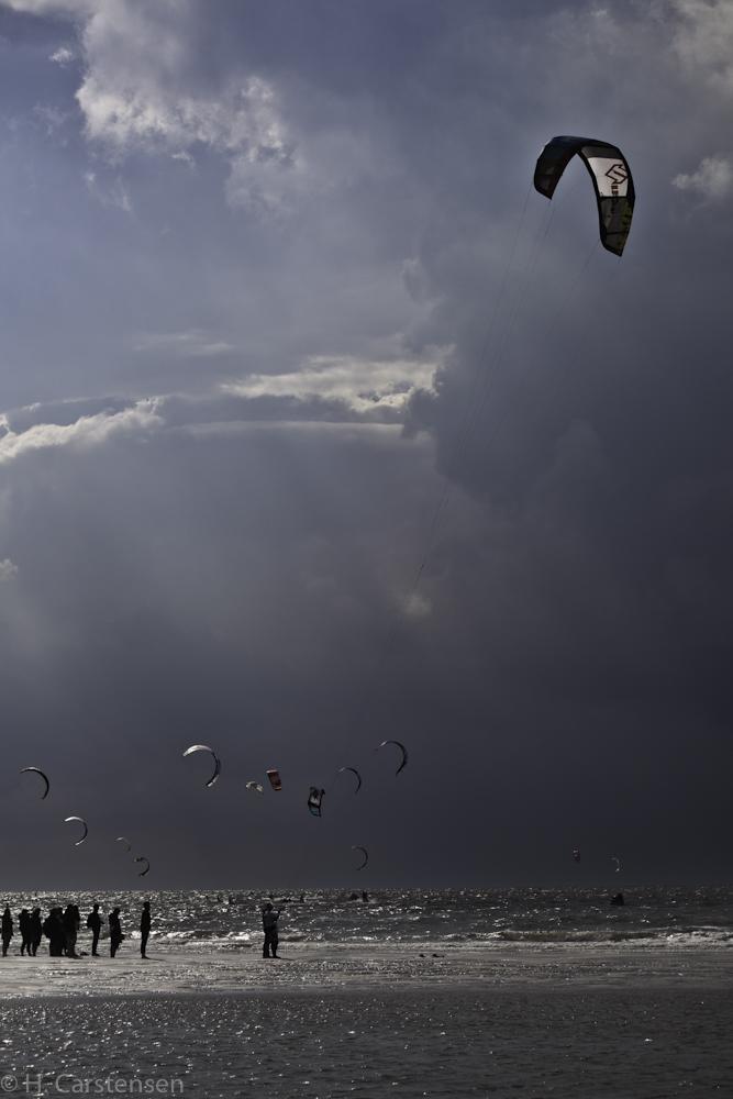 beetle-kite-wm-28-von-60.jpg