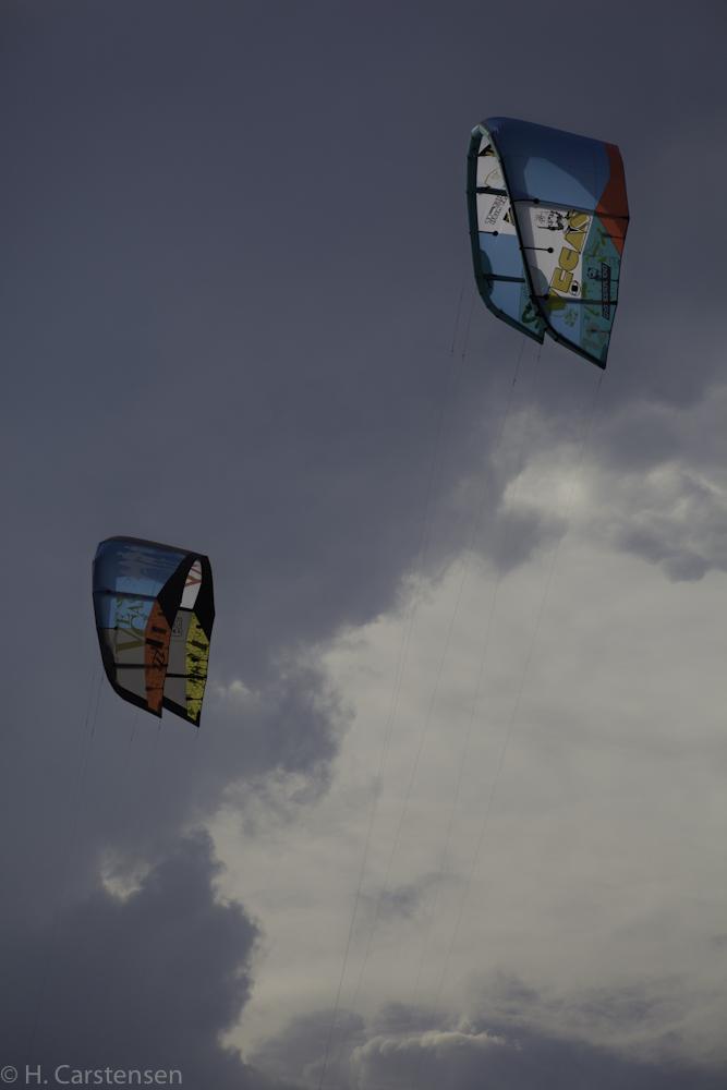 beetle-kite-wm-30-von-60.jpg