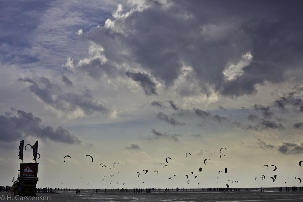 beetle-kite-wm-35-von-60.jpg