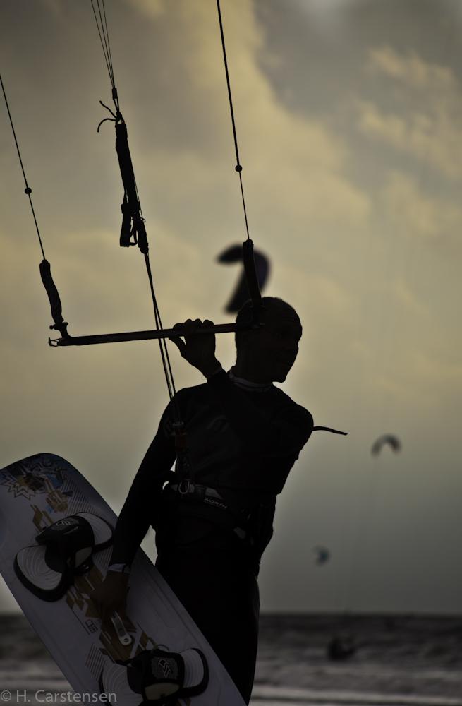 beetle-kite-wm-42-von-60.jpg