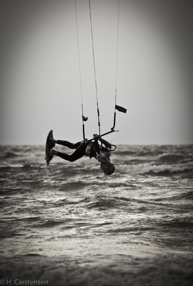 beetle-kite-wm-46-von-60.jpg
