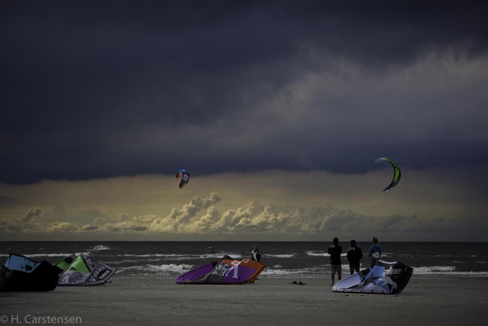 beetle-kite-wm-50-von-60.jpg