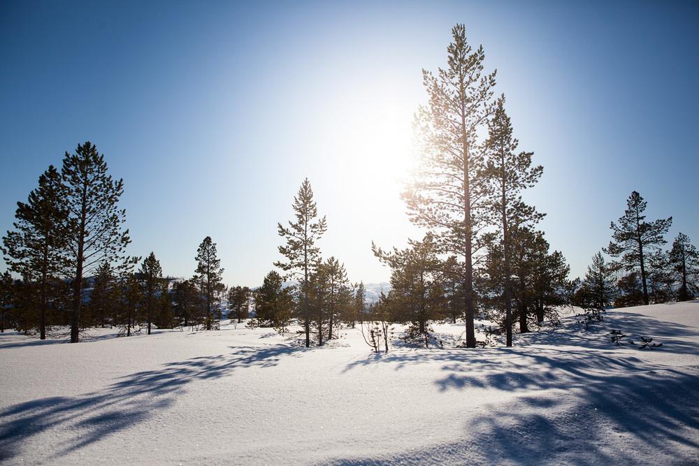 Norway Blog (36 von 119).jpg