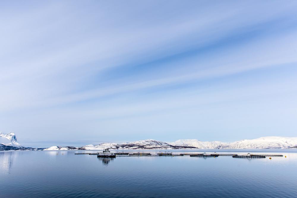 Norway Blog (43 von 119).jpg