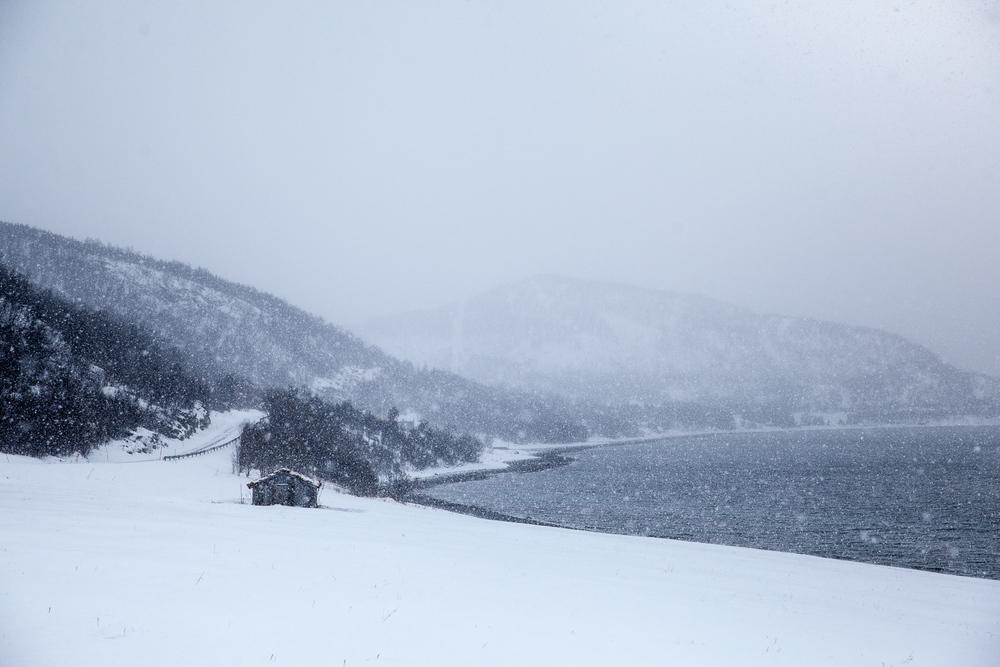 Norway Blog (51 von 119).jpg