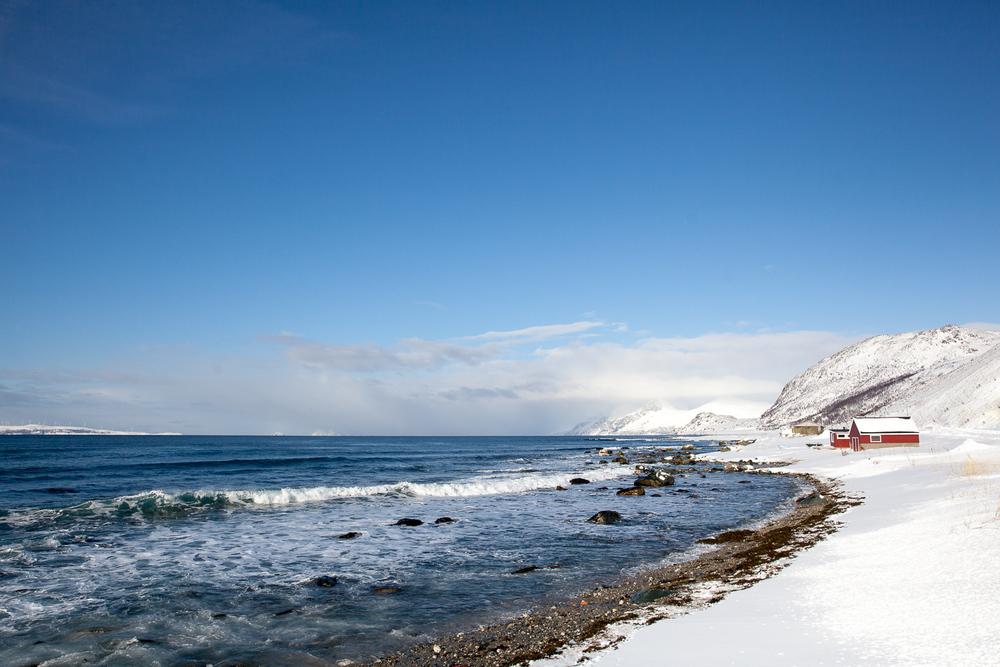 Norway Blog (59 von 119).jpg