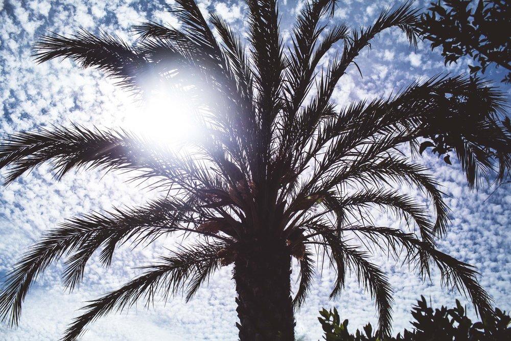Mallorca-27.jpg