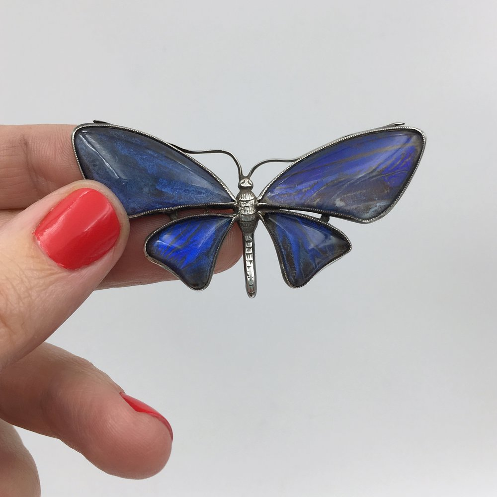 Antique butterfly wing jewelry Reverie vintage shop NYC