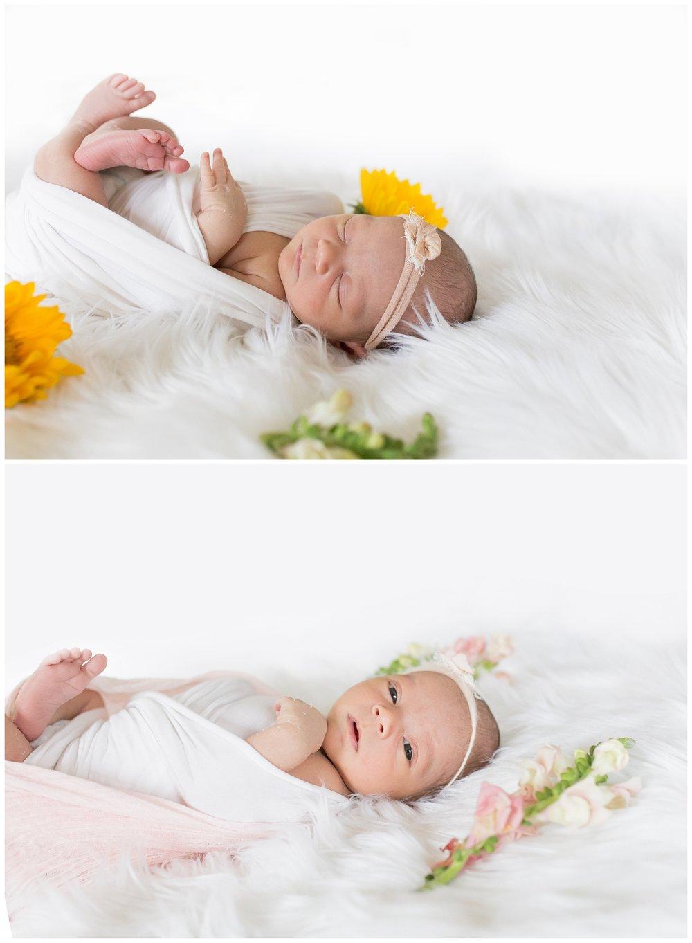 san clemente newborn photography poppy lea