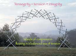 Tensegrity models can be quite extravagant and near impossible to imagine how they maintain they're shape.