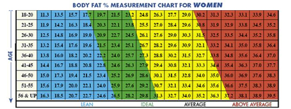 Average Fat Percentage