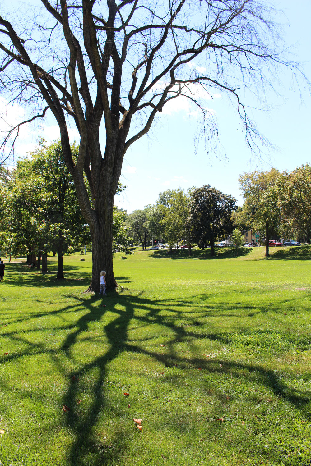 Amherst Town Green
