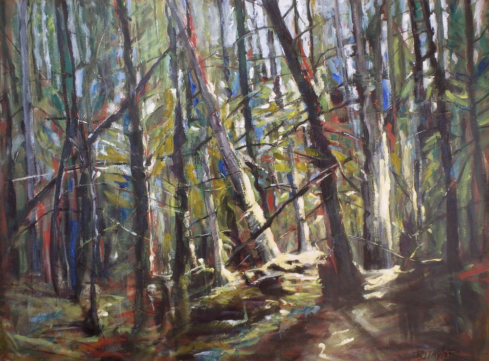 """Forest"" 30x40 acrylic on canvas SOLD"