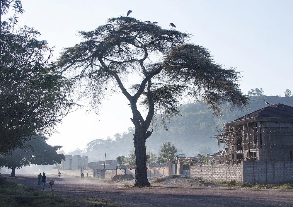 Awassa, Ethiopia 2012