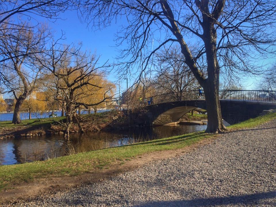 Charles River Run