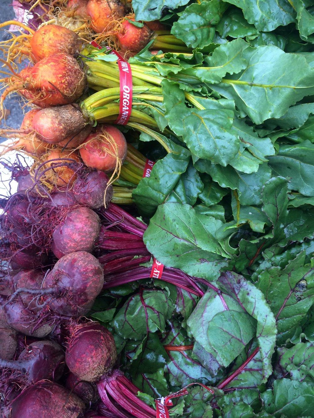 Portland Maine Farmer's Market