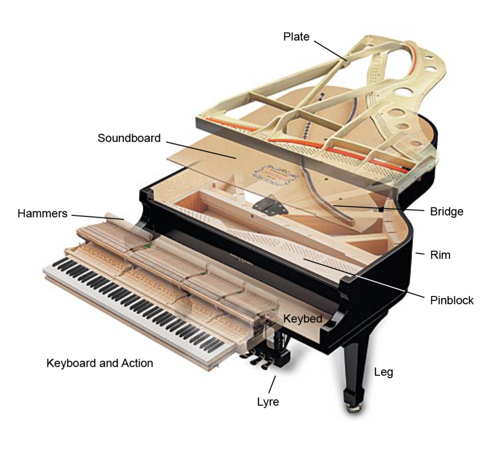 Piano Structure — Radford Piano Services