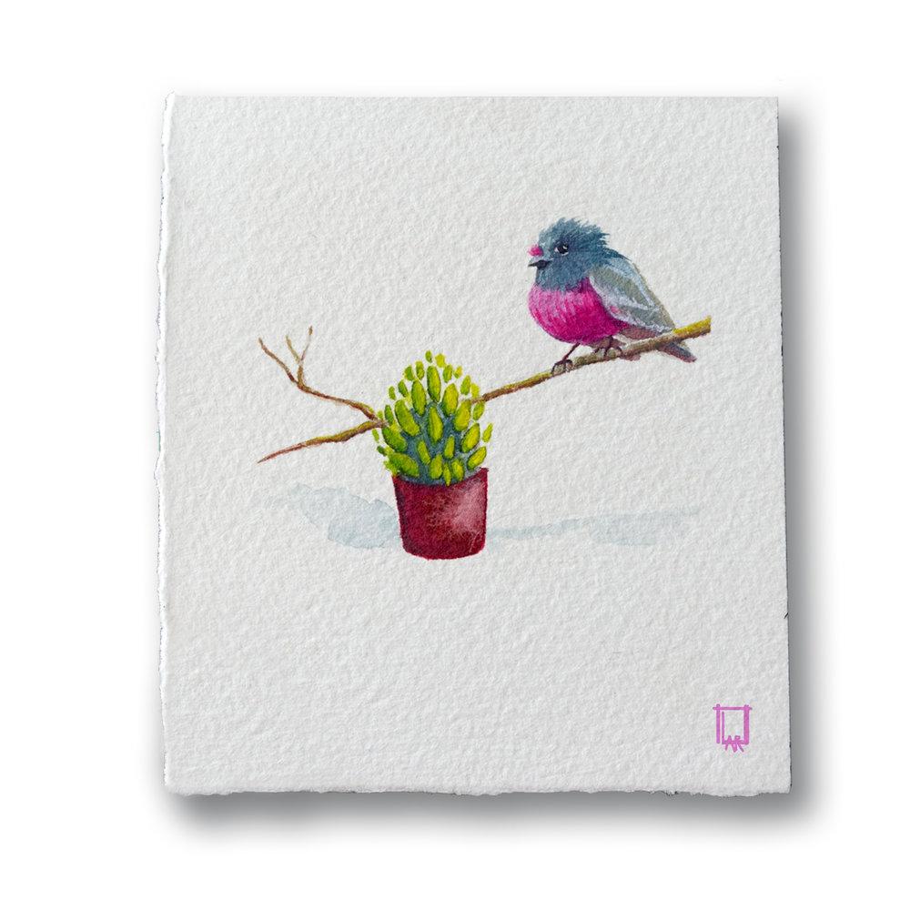 Gran's Bird.jpg