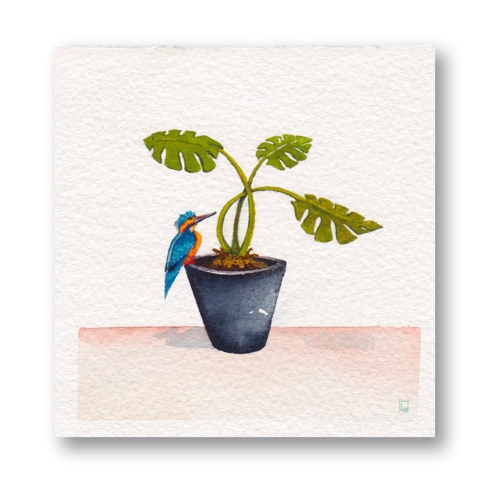 Plant & Bird 2
