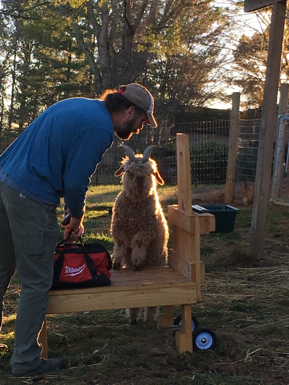 Tucker, helping Jay with his tools