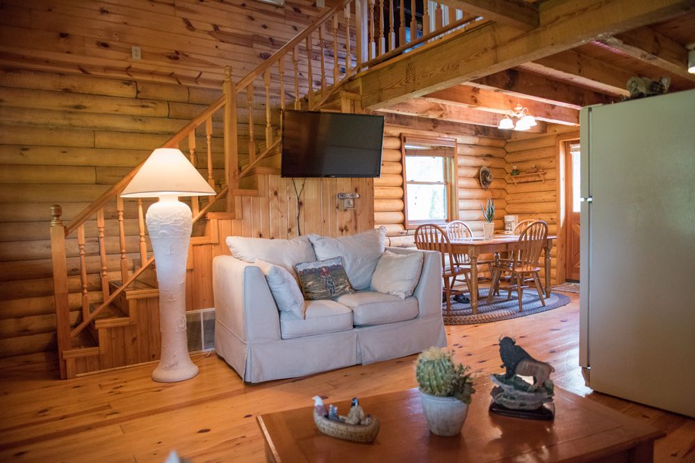 Log Cabin Living Room Area With An HD Tv And Much More.