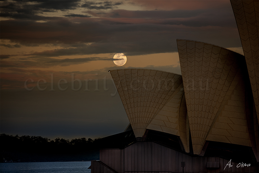 Supermoon over Sydney opera house 2016