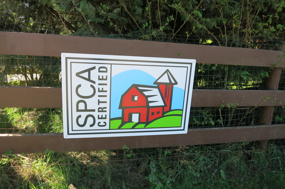 Look for SPCA certified signs!