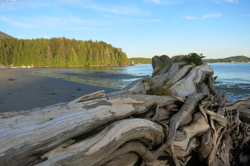 Enjoying the beautiful beaches of Meares Island