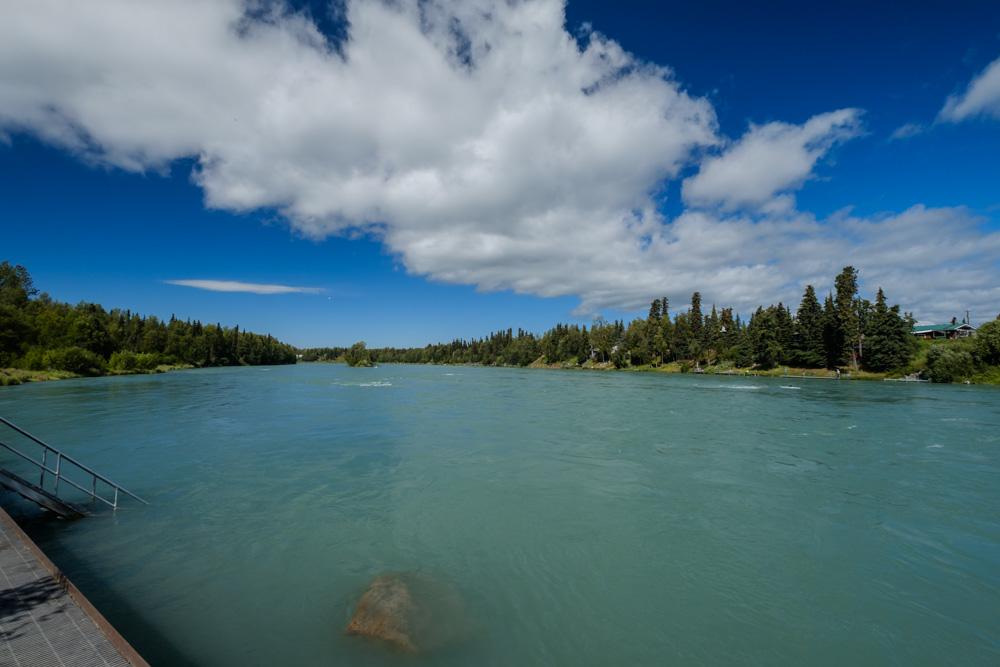 Kenai River in Soldotna