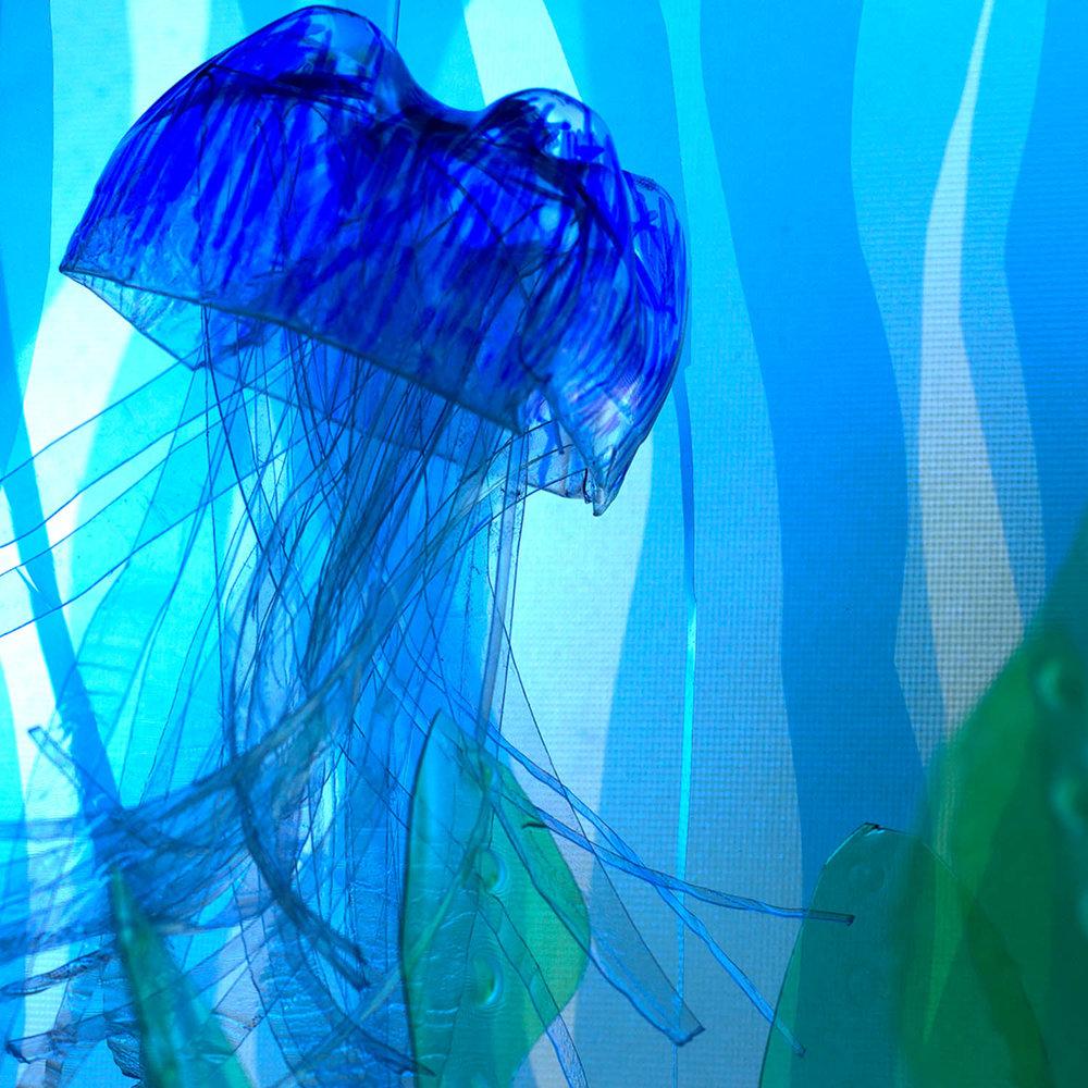 jellyfish_1500x1500.jpg