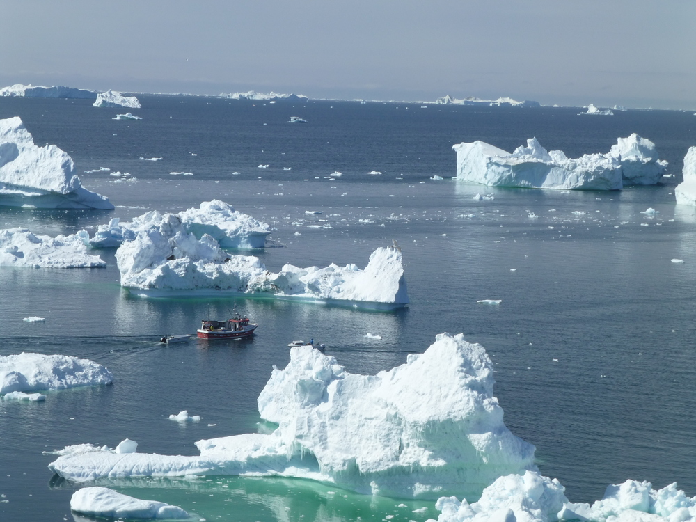 Navigating icebergs in disko bay